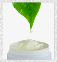 jojoba-Facts_03